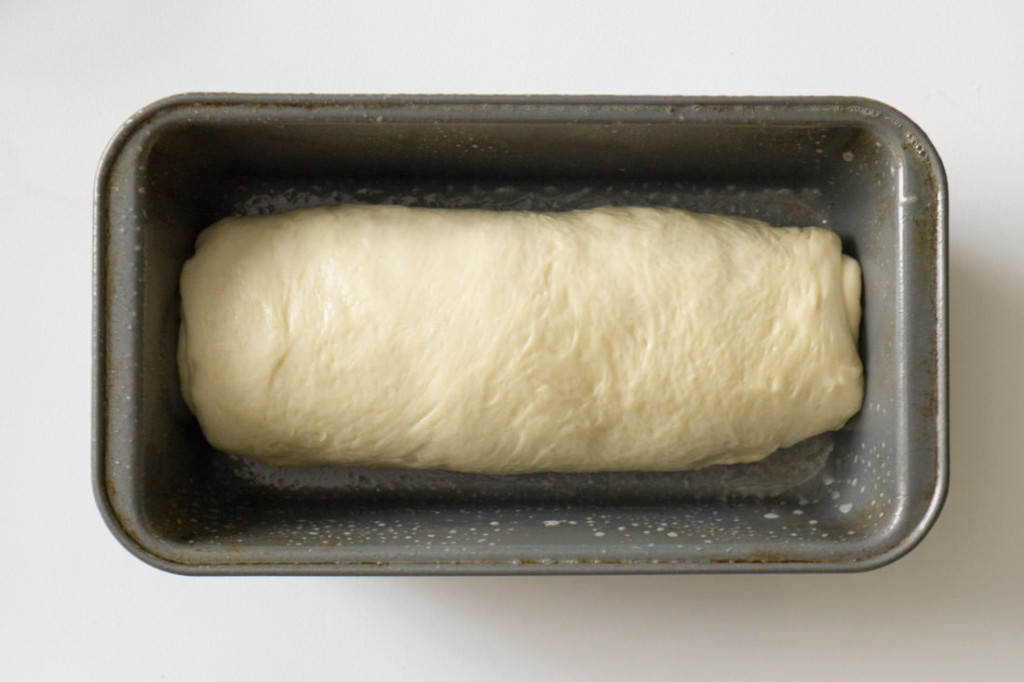 Japanese milk bread dough, rolled up into jelly roll and placed in pan